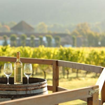 Celebrate English wine with De Vere Horsley Estate and Denbies Wine Estate for wine-loving honeymooners